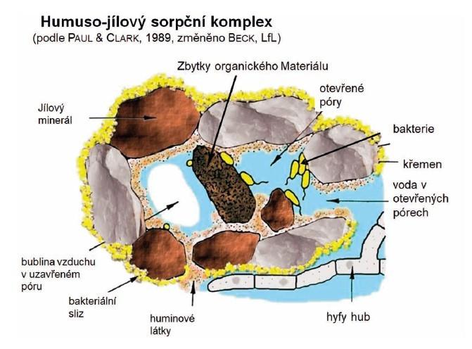Půda Afenomén Sucha